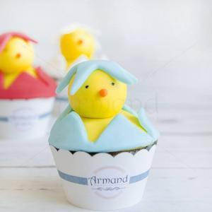 Cupcake pui albastru
