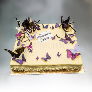 Tort Decor ciocolata si fluturi