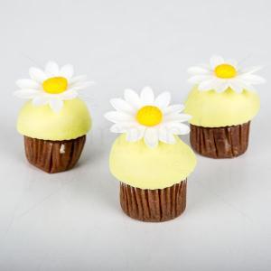 Mini cupcake margarete