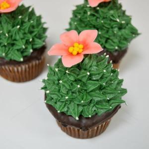 Cupcakes Cactusi si flori