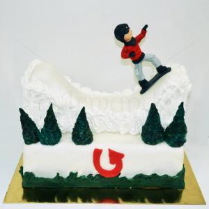 Tort Iarna - Placa Burton