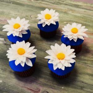 Mini Cupcake Margarete albe