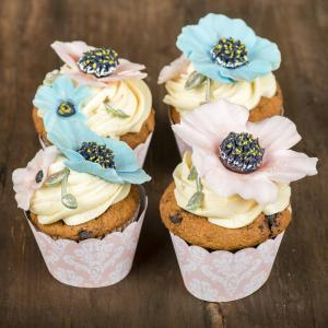Cupcakes Anemone
