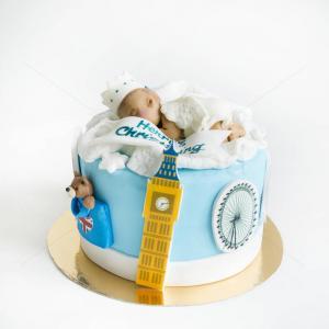Tort Baby travel