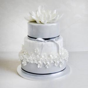 Tort Nuferi albi