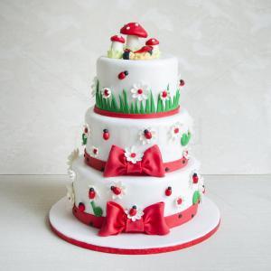 Tort Ciupercute si buburuze