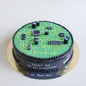 Tort Inginer - placa de baza