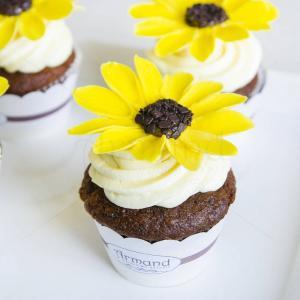 Cupcake Floarea Soarelui