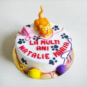 Tort Pisica portocalie