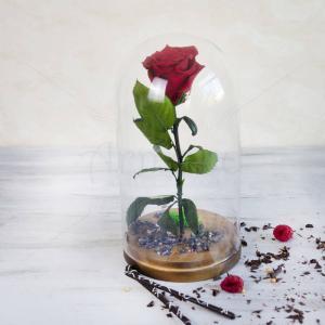 Trandafir natural nemuritor
