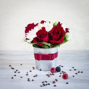 Galetusa Flori de sarbatoare