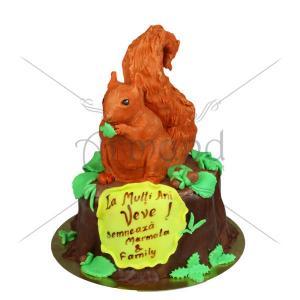 Tort Veverita