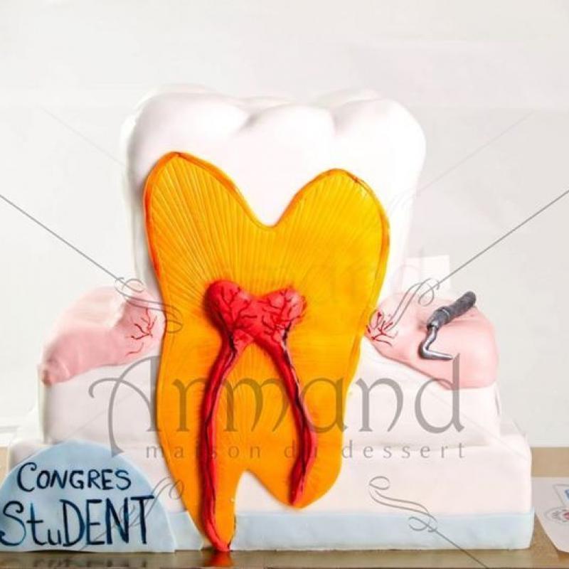 Tort corporate Congresul studentilor stomatologi