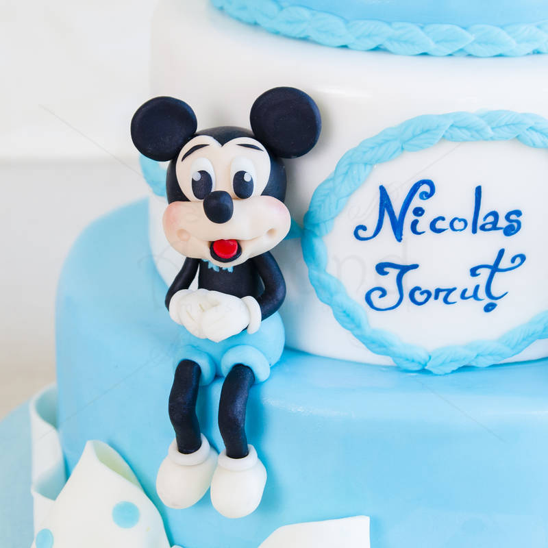 Tort Mickey & Minnie