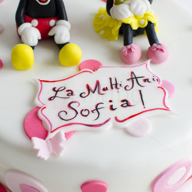 Tort Mickey si Minnie roz
