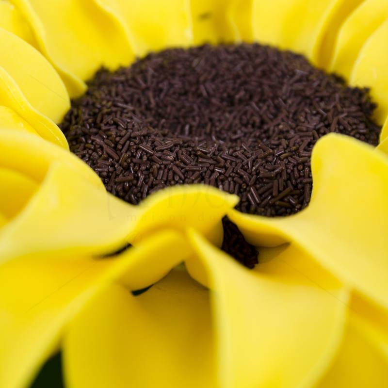 Tort Floarea soarelui