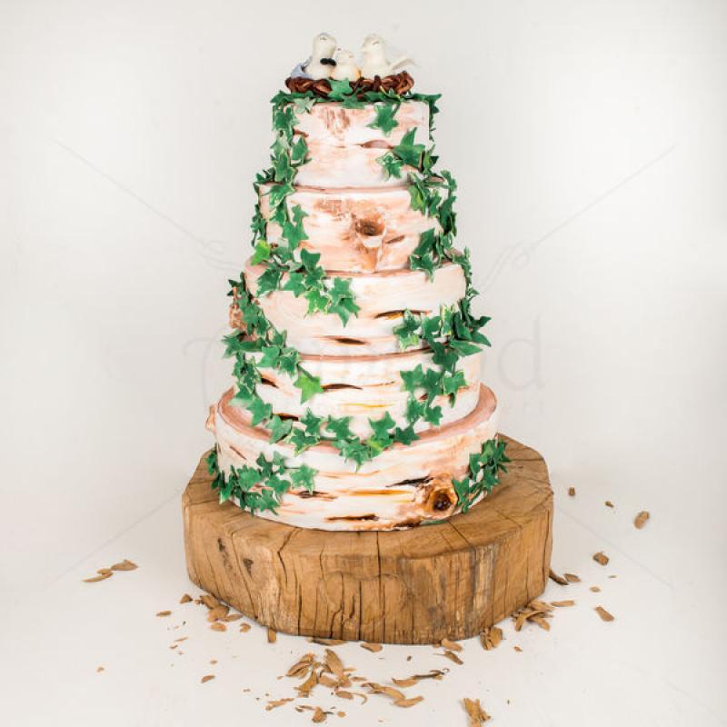 Tort Scoarta de copac si iedera
