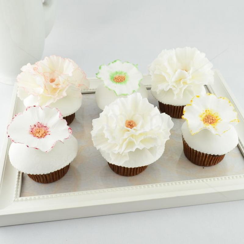 Colectie cupcake flori albe
