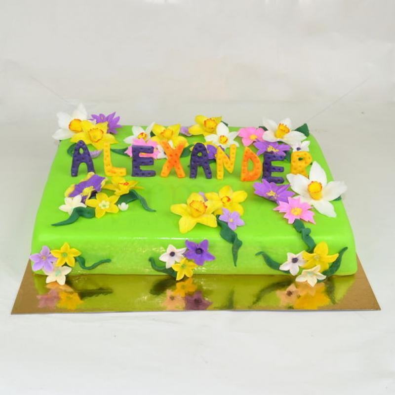 Tort gradina flori primavara