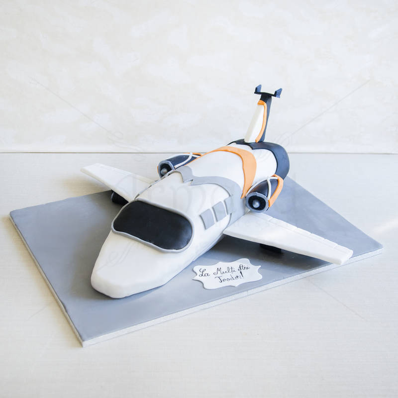 Tort Avion privat