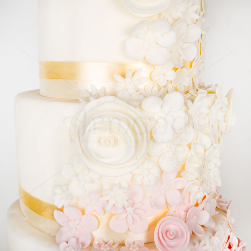 Tort Flori degradee