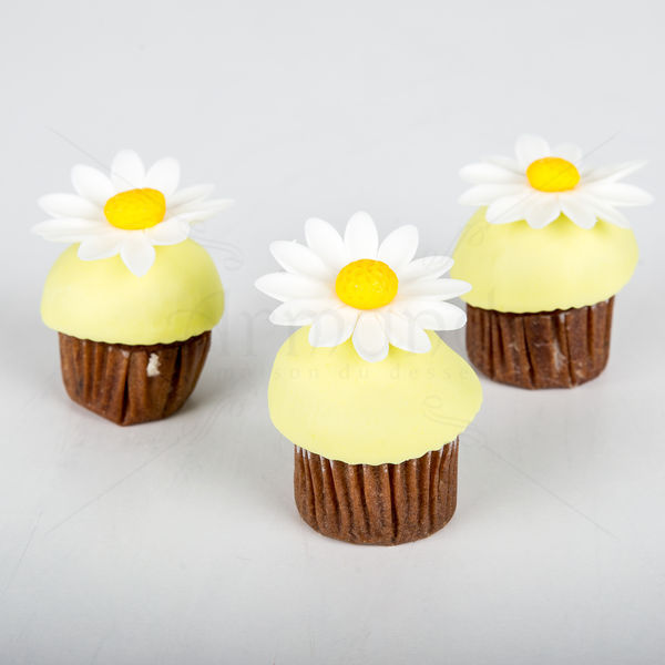 Mini cupcake margarete