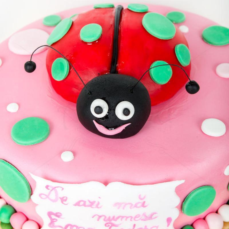 Tort Buburuza vesela