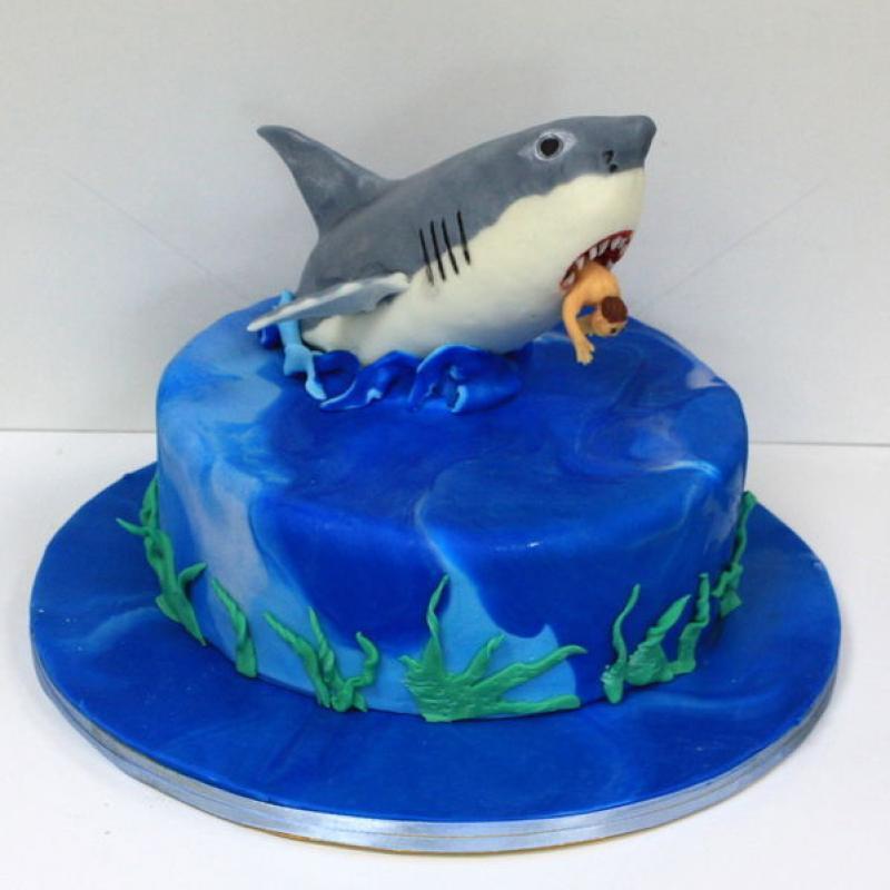 Tort rechin infricosator