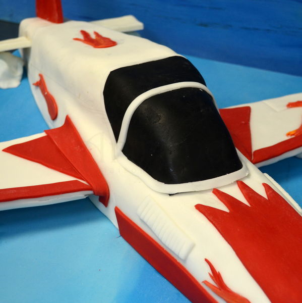 Tort Avion privat 2