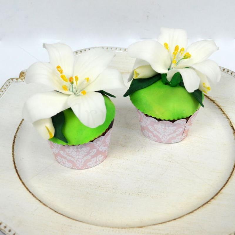 Cupcake crini