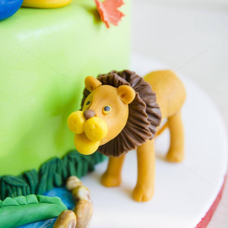 Tort Jungla colorata