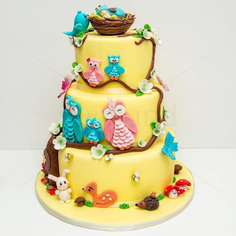 Tort Familia de bufnite
