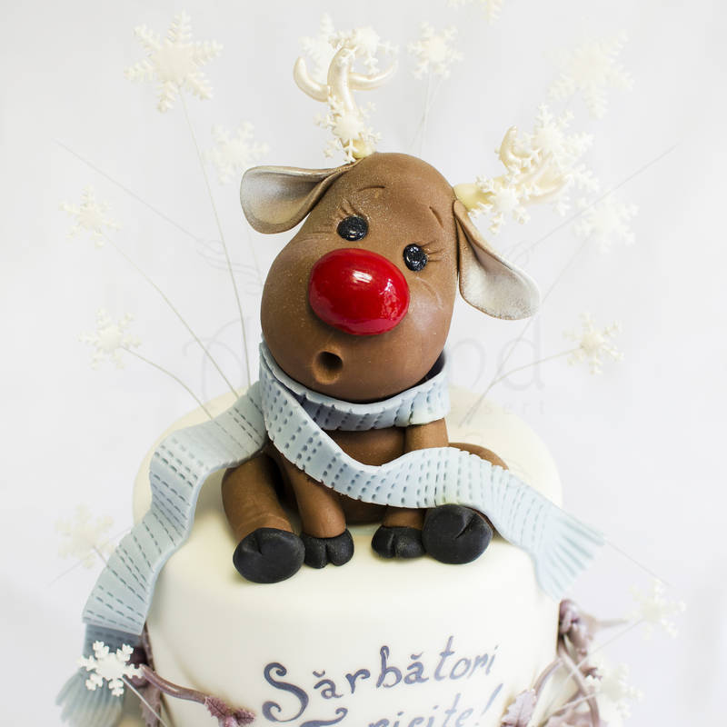 Tort Renul Rudolf