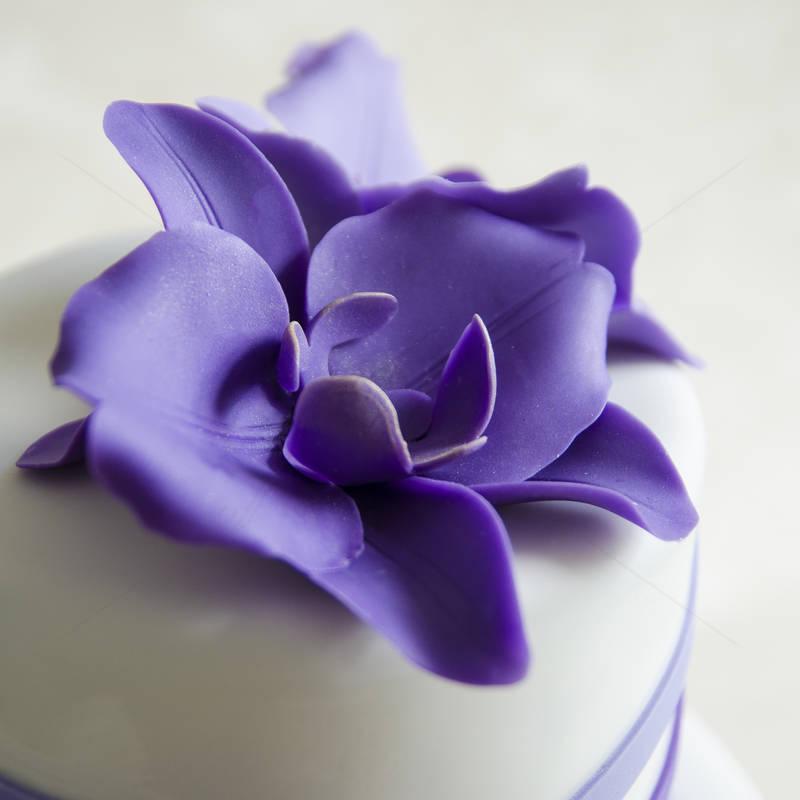 Tort Orhidee Mov-Lila