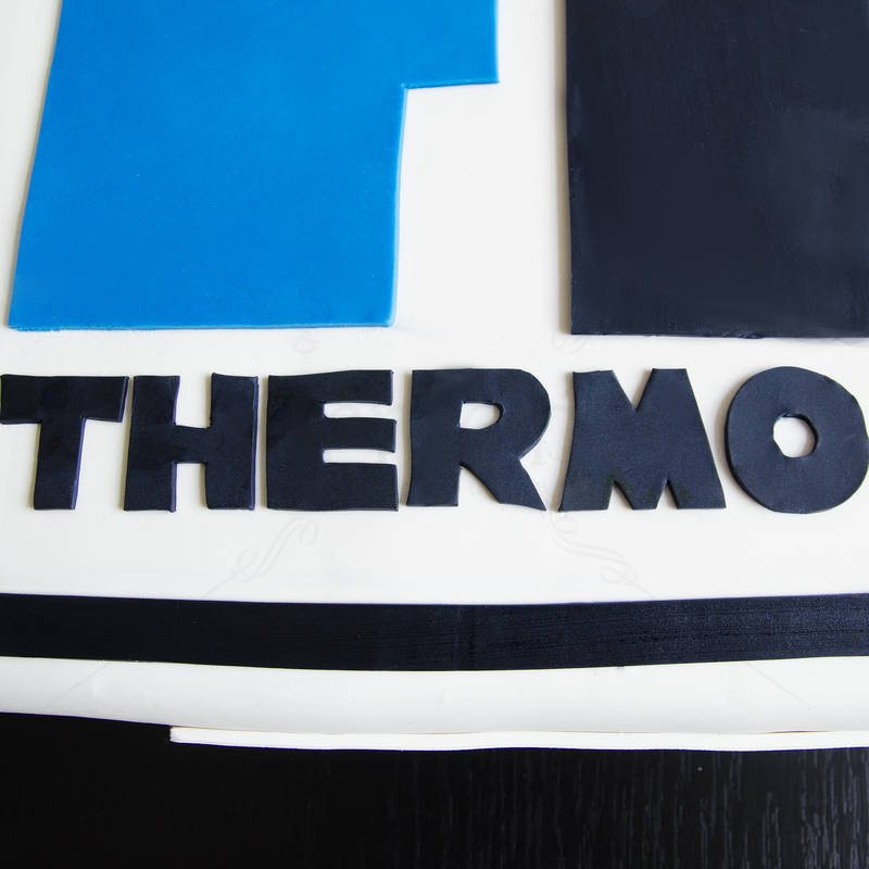 Tort corporate Logo Termoport