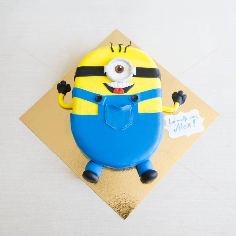 Tort Minion 2D