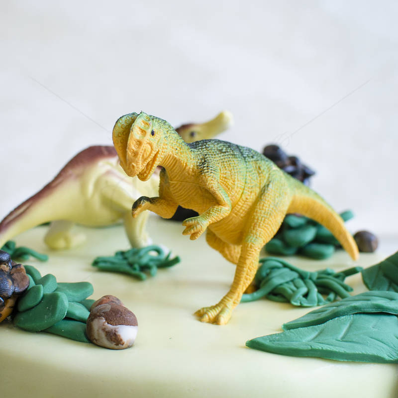 Tort Dinozauri jucarie