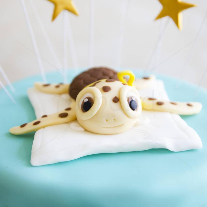Tort Broscuta Testoasa