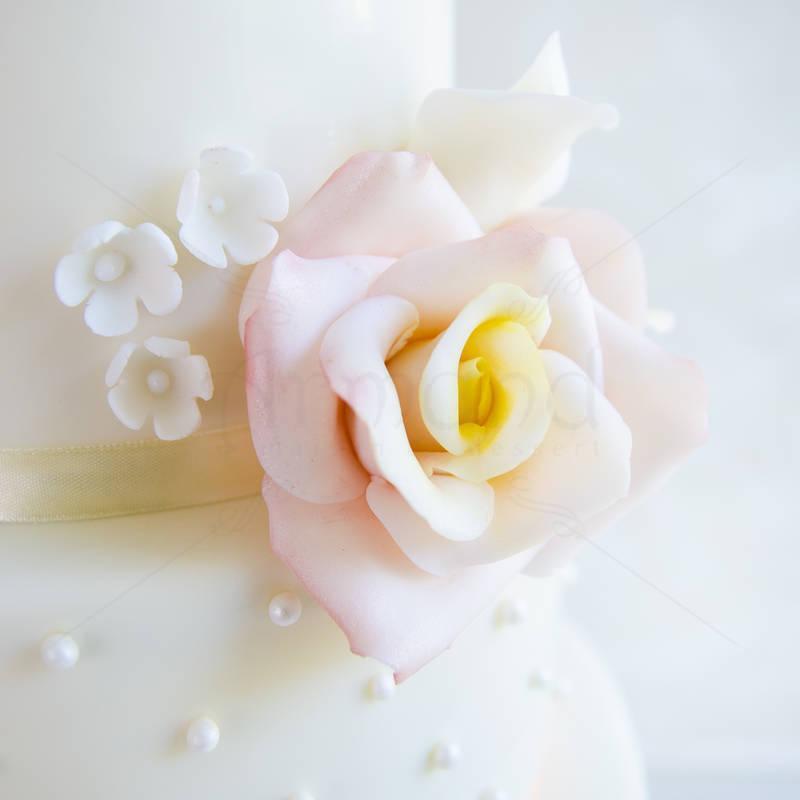 Tort Simplu Roz Somon