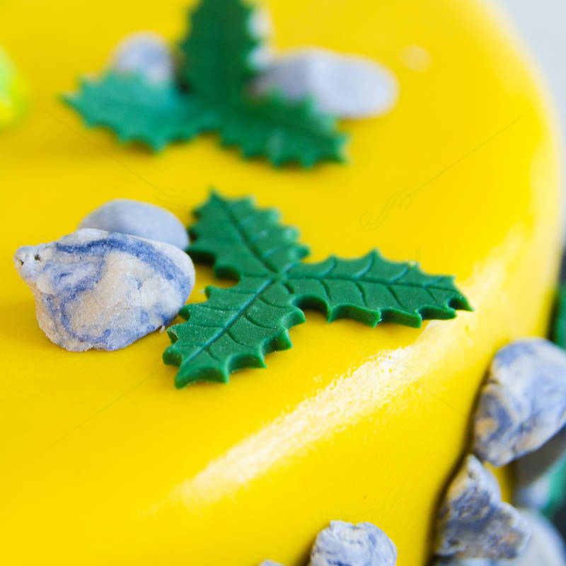 Tort Bunul Dinozaur