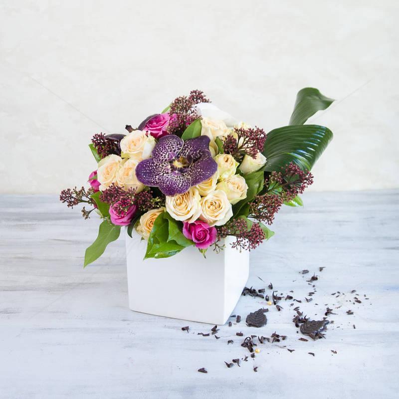 Cub Flori Exotice