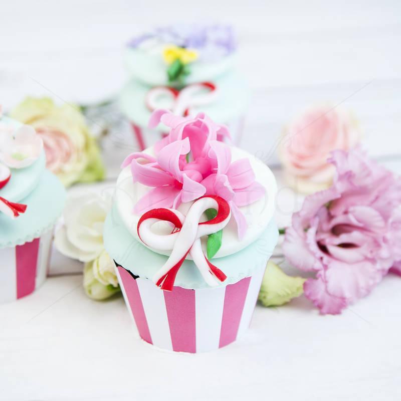 Colectie Cupcake flori de primavara