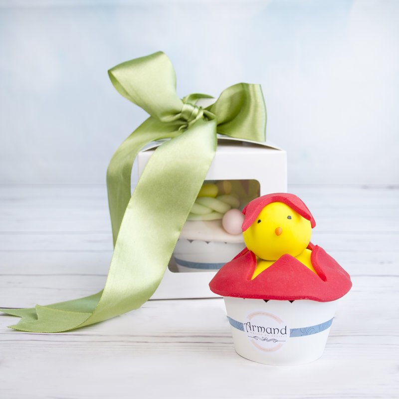 Cadou Paste Cupcake tematic