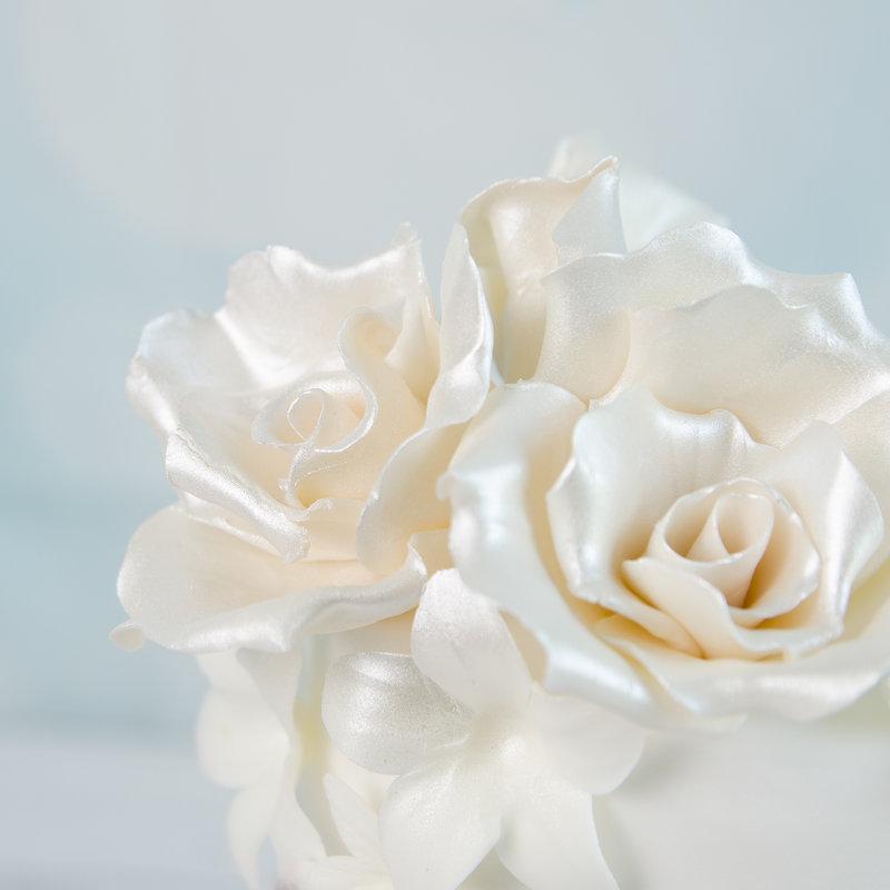 Tort Visiniu Regal si Trandafiri Albi
