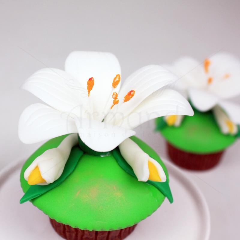 Cupcake Crini Regali
