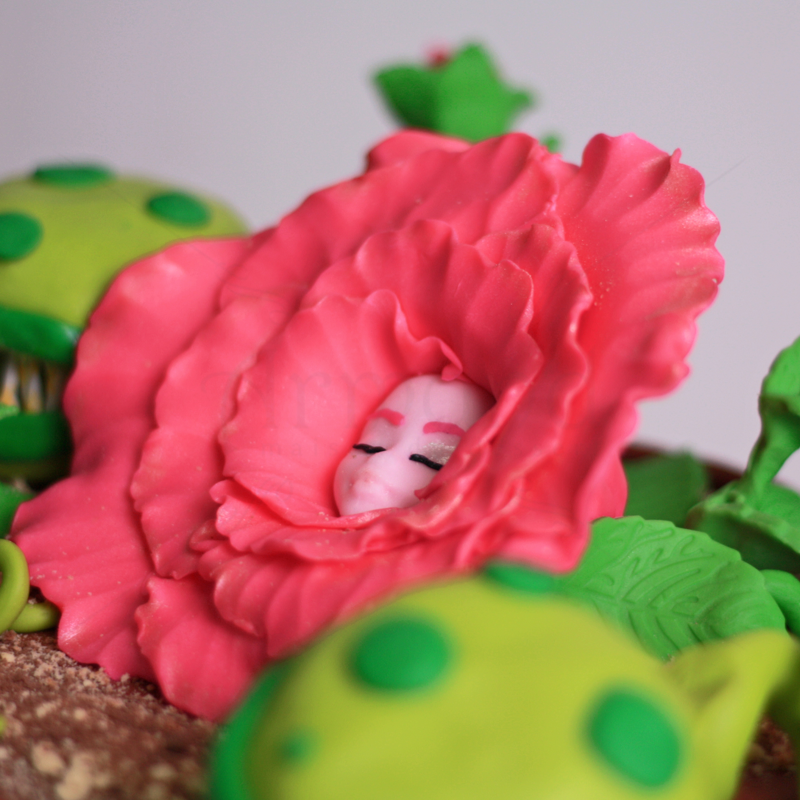 Tort Gradina Fermecata