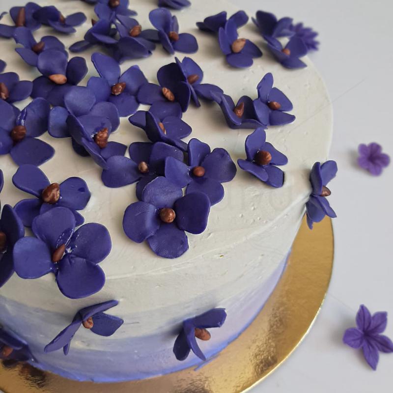 Tort camp de violete