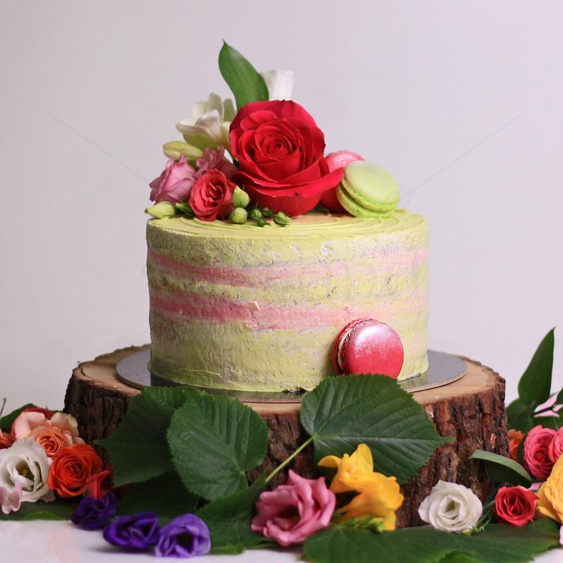 Tort Green Velvet
