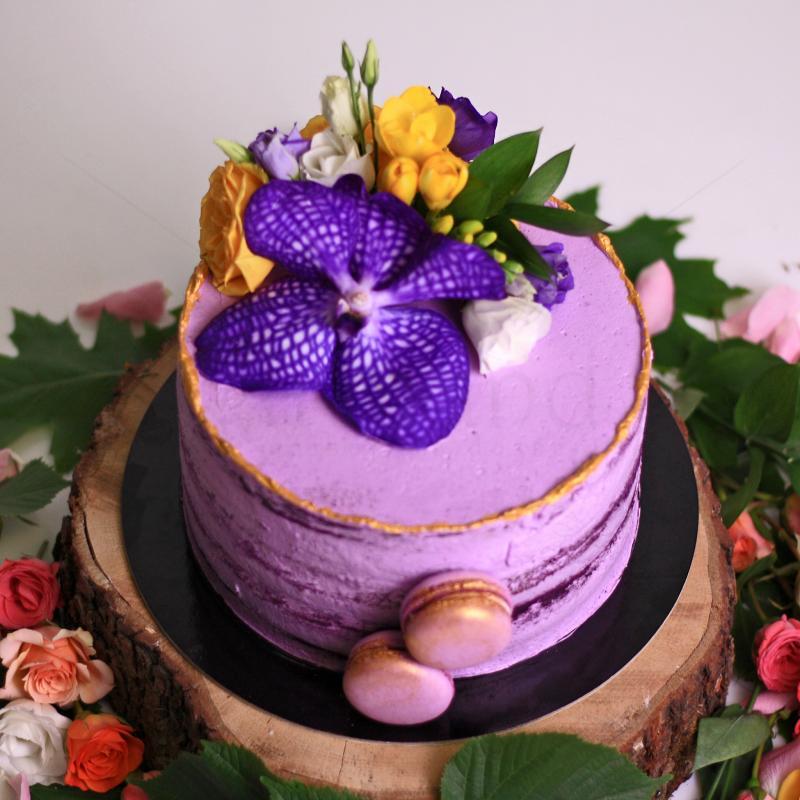 Tort Purple Velvet