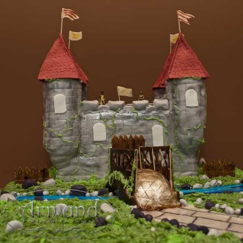 Tort Cetate medievala